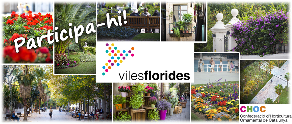 Viles Florides