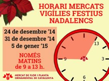 Horaris especials Nadal web