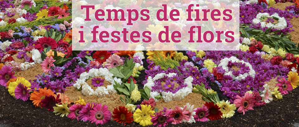 Festes florals 2015