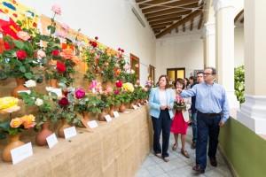 Concurs Roses Calella