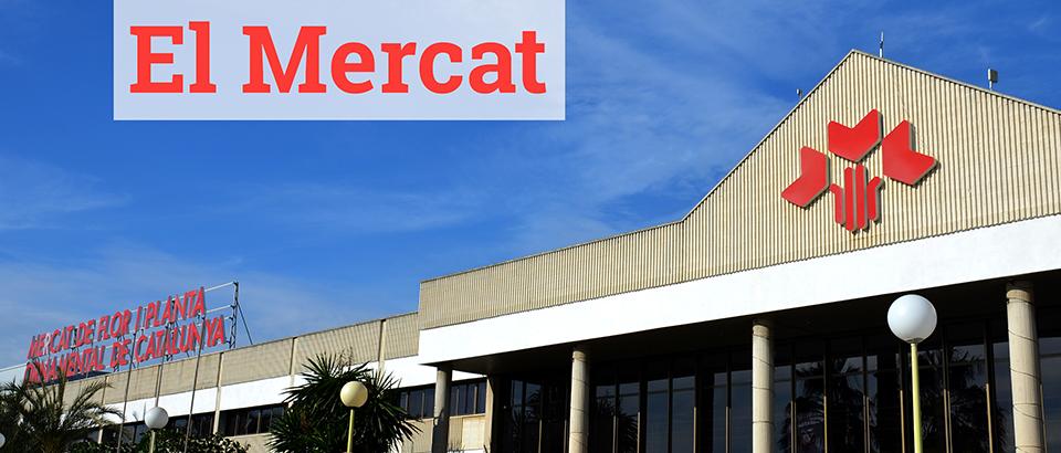 Mercat de Flor i Planta Ornamental de Catalunya