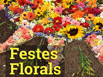 Festes florals