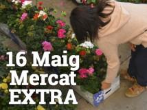 Mercat extra 16 CAT