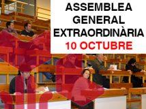 Assemblea Oct Web