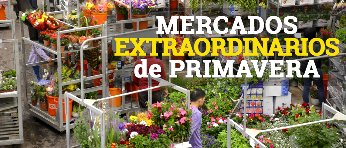 Mercados extraordinarios primavera
